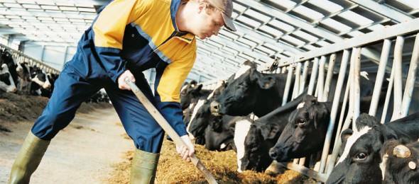 Αποτέλεσμα εικόνας για Δήλωση παραγωγής και διακίνησης ζωοτροφών